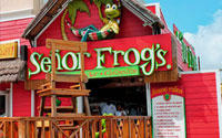 Spring Break Cruises, Bahamas - Senor Frogs Nassau