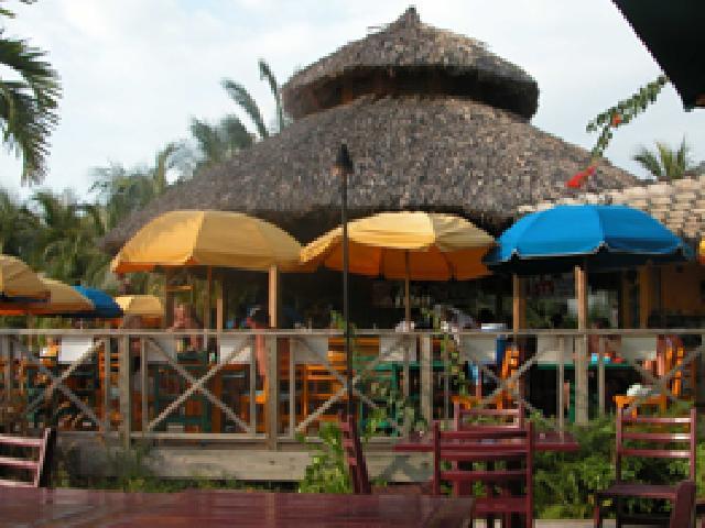 Groovy Grouper - Montego Bay, Jamaica