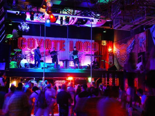 Oasis Cancun Lite - Coyote Loco