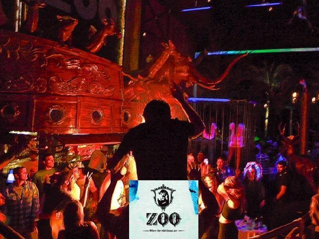 Zoo Nightclub In Puerto Vallarta Mexico