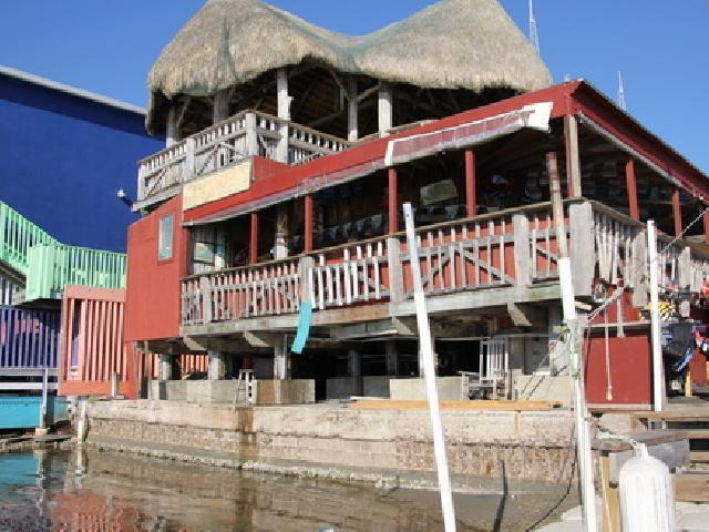Coconuts Bar & Grill - South Padre, USA