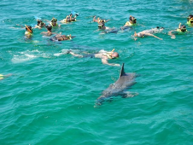 Sea Screamer Snorkel Cruise - Panama City, USA