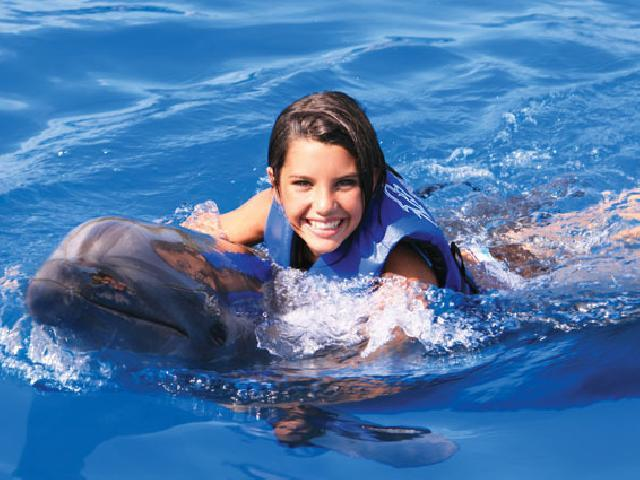 Swim with Dolphins - Cabo San Lucas, Mexico