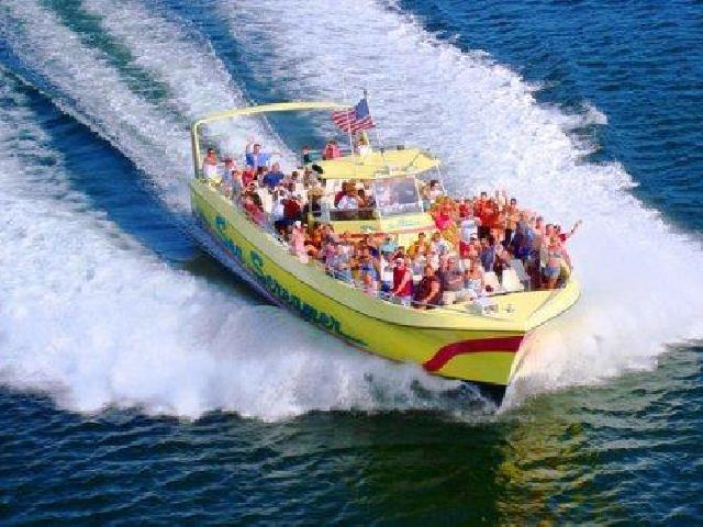 Sea Screamer Dolphin Cruise - Panama City, USA
